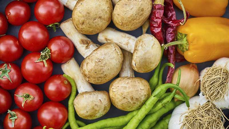 Wpływ żywienia na pracę mózgu i aktywność psychiczną człowieka - Biolit