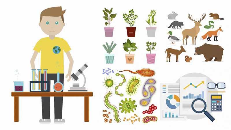 Wychowanie proekologiczne - Biolit