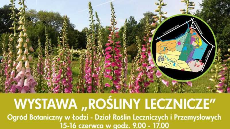 """Zapraszamy na prelekcję na temat ziół adaptogennych. Wystawa """"Rośliny lecznicze"""" Łódź / 15-16.06.2019 - Biolit"""