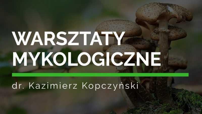 Warsztaty Mykologiczne z dr. Kazimierzem Kopczyńskim na Jurze Krakowsko-Częstochowskiej / 12-15.09.2019 - Biolit