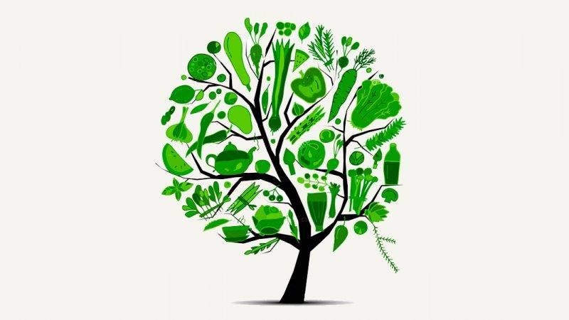 Oczyszczanie organizmu z metali ciężkich - Biolit