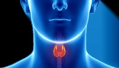 Opowieść o endokrynologii - Biolit