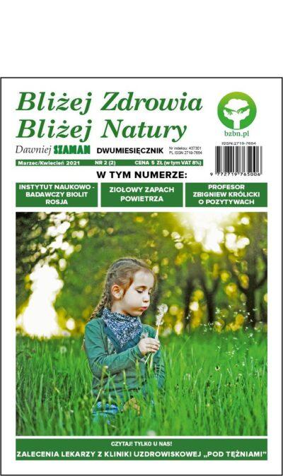 Produkt - Gazeta BZBN #2/Wersja elektroniczna